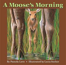 A Moose's Morning
